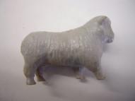 SP-Gray Sheep