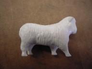 SP- White Sheep