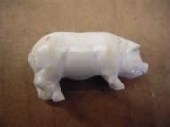 SP-White Pig